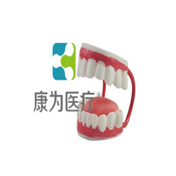 """张掖""""康为医疗""""儿童牙护理保健模型"""