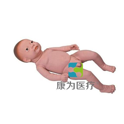 """张掖""""康为医疗""""高级足月胎儿模型(男婴、女婴任选)"""