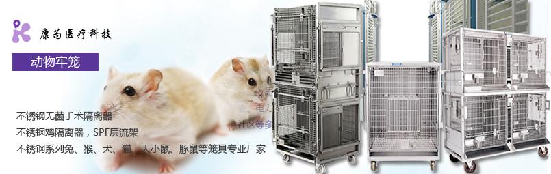 豚鼠IVC独立送风隔离笼具