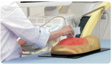 乳腺超声检查模型,产品编号:US-6