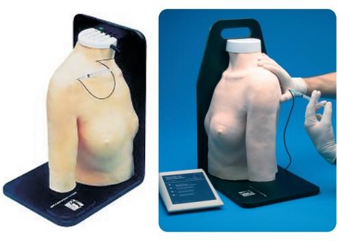 张掖肩关节腔内注射模型,产品编号:30010
