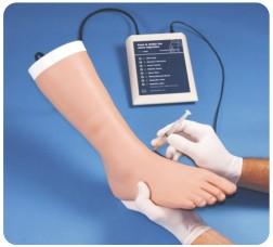张掖足部及脚踝关节注射模型,产品编号:30100