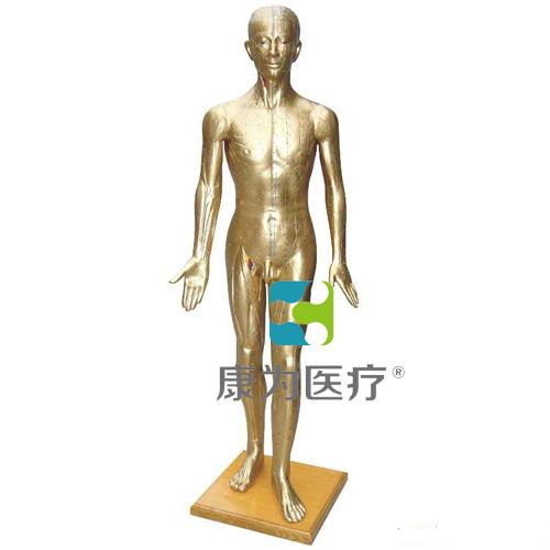 """""""康为医疗""""人体针灸模型178CM(青铜色)"""