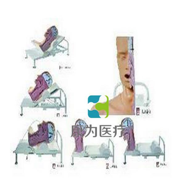 """张掖""""康为医疗""""高级吞咽机制模型"""