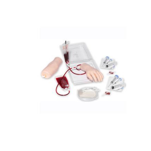 德国3B Scientific®静脉注射用手臂和手部训练装置