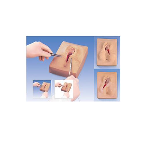 张掖德国3B Scientific®会阴侧切缝合模拟装置,一组3件