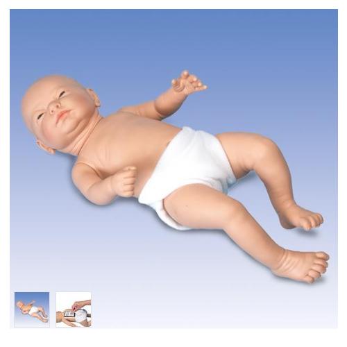 张掖德国3B Scientific®Ready-or-Not-Tot® 互动婴儿模型,男婴