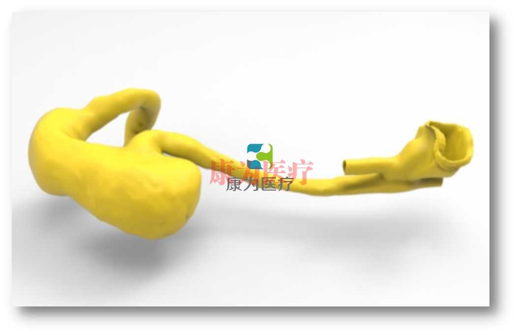 胃肠内镜介入培训万博app下载官网,胃肠内镜介入模拟系统