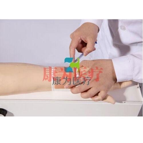 """""""康为医疗""""旋转式静脉穿刺及皮内注射手臂模型"""