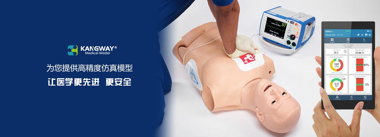 银川医学模型